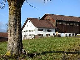 Hinterholz in Kempten (Allgäu)