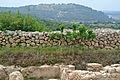 Khirbet Qeiyafa view of Tel Azeka.jpg