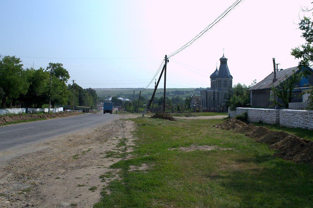 Хоменки (Винницкая область) — Википедия