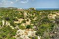 Khu bảo tồn núi chúa vùng bán khô hạn - panoramio (31).jpg