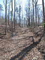 Kings Mountain National Military Park - South Carolina (8557772447) (2).jpg