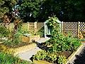 Kitchen Garden, Ranger Centre, Stanton Park, Swindon (2) - geograph.org.uk - 1526320.jpg