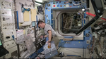 Kjell Lindgren ISS Expedition 44 Flight Engineer.png