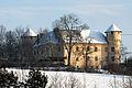 Klagenfurt Woelfnitz Tenschach Schloss Tentschach 27012010 923.jpg