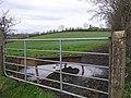 Knockbane Townland - geograph.org.uk - 673282.jpg