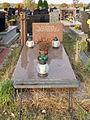 Komunalny Cmentarz Południowy w Warszawie 2011 (15).JPG