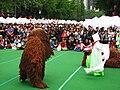 Korean dance-Bukcheong Saja Noreum-02.jpg
