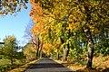 Korzybie-jesienny-2019-1.jpg
