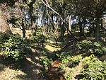 Koshokei Stream in Shukkei Garden 1.jpg