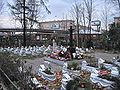 Krasnenkoe cemetery 4.jpg