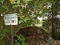 Kutusekivi, Lääne-Nigula vald Kadarpiku küla.jpg