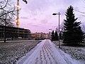 Kyösti Kallion puisto Oulu 20181129 02.jpg
