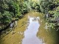 L'Allaine, en amont du pont de Morvillars.jpg