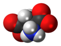 L-Aspartate-anion-3D-spacefill.png