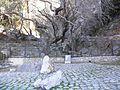 La fontaine de Castalie.JPG