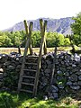 Ladder Stile near Wastwater - geograph.org.uk - 1318558.jpg