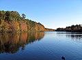 Lake Lynn Raleigh.jpg
