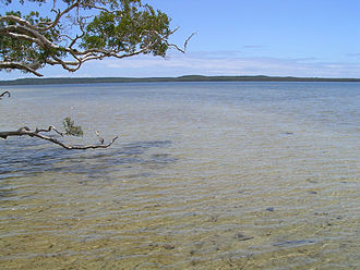 Noosa National Park - Lake Weyba