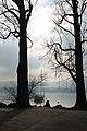 Lake Zurich - panoramio (30).jpg