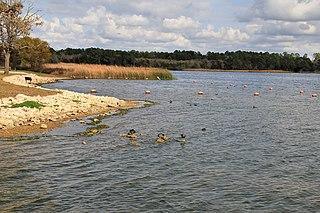 Lake Bastrop lake of the United States of America