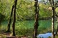Lake in Yedigöller - panoramio.jpg