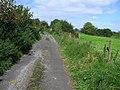Lane, Brackary More - geograph.org.uk - 1495029.jpg