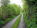 Lane at Polladooey - geograph.org.uk - 1302708.jpg