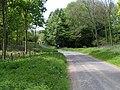 Lane through West Woods - geograph.org.uk - 1318966.jpg
