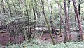 Latouille-Lentillac Gorge (35838878982).jpg