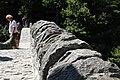Lavertezzo. Ponte dei salti. 2011-08-13 11-23-03.jpg