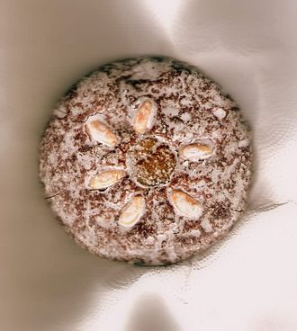 Lebkuchen - Nürnberger Lebkuchen with almonds and sugar coating, of the Elisen type (Elisenlebkuchen)