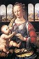 Leonardo, Madonna mit Nelke.JPG