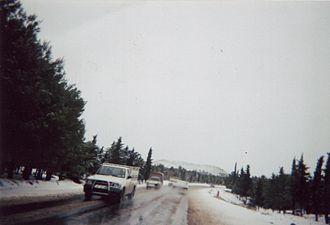 Hautes Plaines - Winter in the Hautes Plaines near Aïn Babouche.