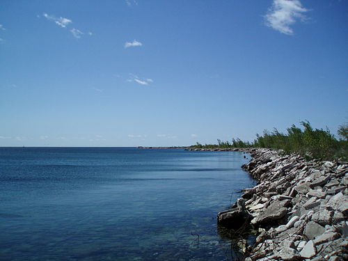 Thumbnail from Tommy Thompson Park