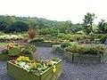 Leswalt Community Garden - geograph.org.uk - 1725553.jpg