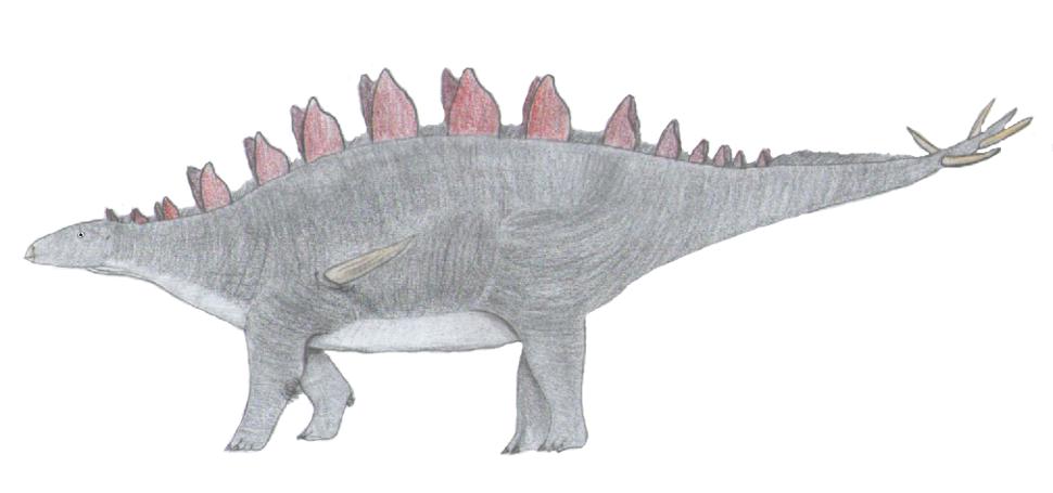 Lexovisaurus3