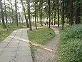 Lieninski District, Mogilev, Belarus - panoramio (386).jpg