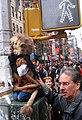 Lion cub (121512967).jpg