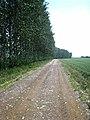 Little Oulsham Drove - geograph.org.uk - 463963.jpg