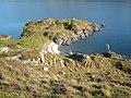 Loch Morar - Roinn a'Ghiubhais - geograph.org.uk - 189305.jpg