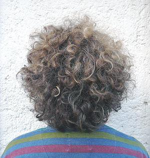 Hinterkopfansicht von kurzem dunkelblondem naturgewelltem Haar im Kopfbildausschnitt