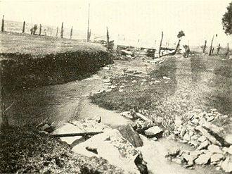 LaRue family - Image: Long Marsh Next To Villa La Rue Clarke County Virginia 1921 Copy