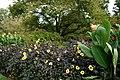 Longwood 2011 09 02 0511 (6160390705).jpg