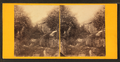 Looking up between the rocks at the Devil's Den, from Robert N. Dennis collection of stereoscopic views.png