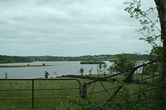 Lough Gowna (230569952).jpg