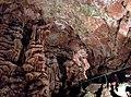 Lovech Province - Yablanitsa Municipality - Village of Brestnitsa - Saeva Dupka Cave (14).jpg