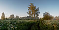 MG 1447 Panorama.jpg