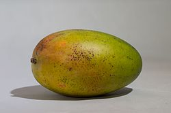 Mango on white.jpg