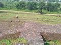 Mansar Archeological Site in Mansar, Maharashtra (2).jpg