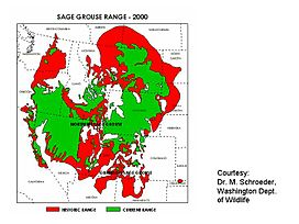 Map sagegrouse range2000.JPG